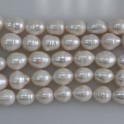 Freshwater Pearl Rice White 13-14mm 16""
