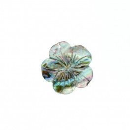 http://luckygem.us/store/19408-thickbox_default/abalone-shell-pendant.jpg